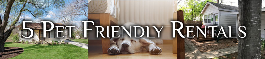 pet friendly rentals in san antonio tx